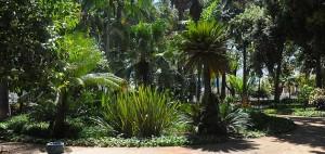 parque-malaga