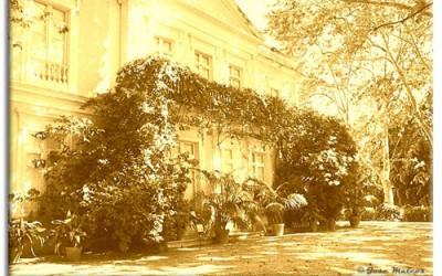 Историко-ботанический сад Малаги