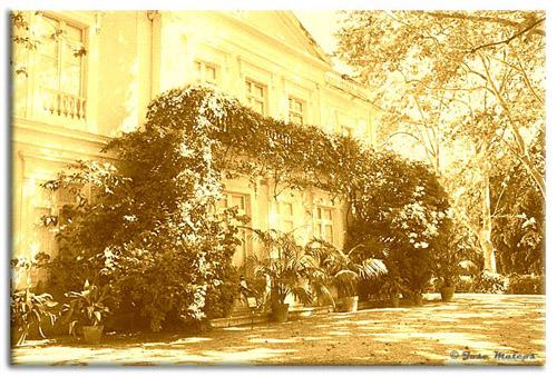 Palacio-antiguo