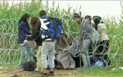 Мэрия Марбельи приглашает всех желающих помочь беженцам