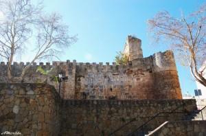03castillo-alcazaba