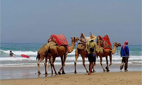 Путешествие в Марокко с побережья Коста дель Соль. Часть 2.